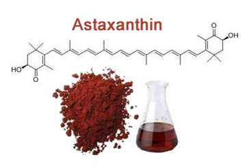Understanding free radicals and antioxidants - astaxanthin