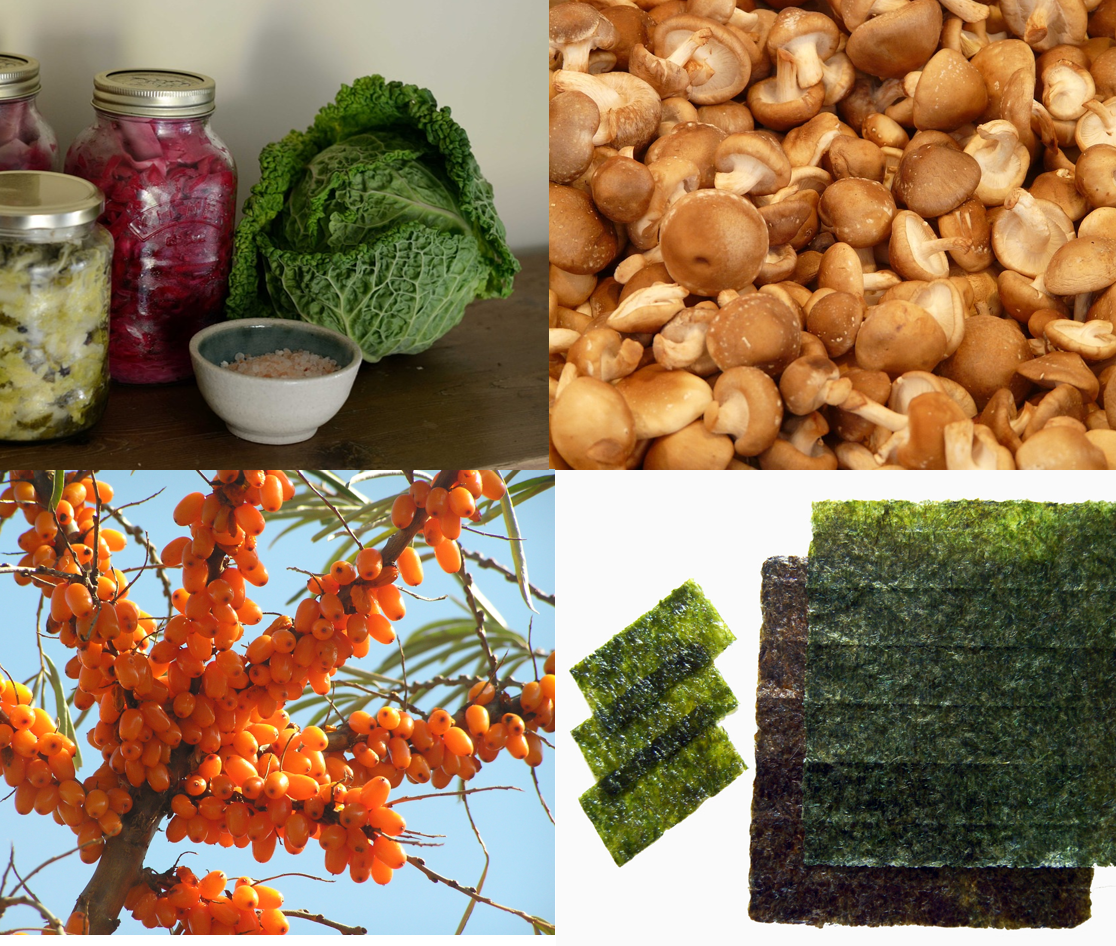 5 more nutrients and corresponding best vegan foods that boost brain power (a few of them are not foods) - ferments, shiitake, sea buckthorns, nori