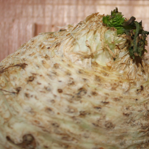 More celery root benefits (aka celeriac) for raw foodists
