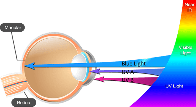 2 ways to protect your eyes from blue light. Use incandescents and IRIS - eye and blue