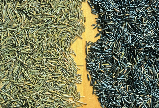 3 Other Vegan Foods With Raw faces - wild rice